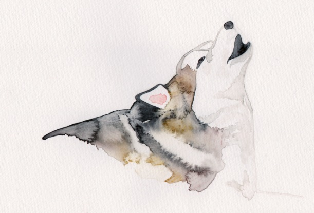 lila-watercolour-1